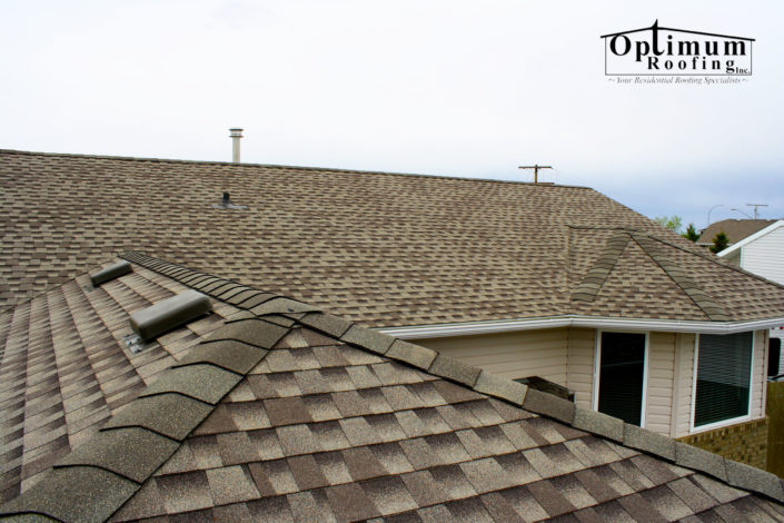 Shingle Roofing in Regina-Optimum